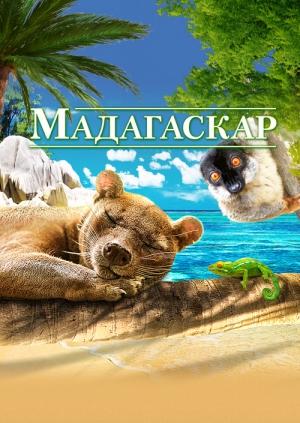 смотреть мадагаскар онлайн бесплатно онлайн: