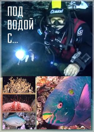 Под водой с...